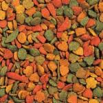 Granule pre papagáje NutriBird P15 Tropical 1kg